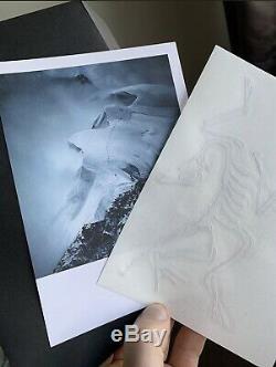 Arc'teryx Alpha Sv Jacket Mens Medium Bnwt, Trail Couleur Blaze, 2020 Édition